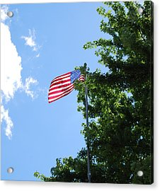 Acrylic Print featuring the photograph USA by Ramona Whiteaker