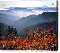 Usa, Washington, Columbia River Gorge Acrylic Print
