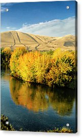 Usa, Washington State, Benton City Acrylic Print