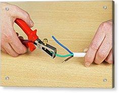 Using Wire Strippers Acrylic Print by Dorling Kindersley/uig