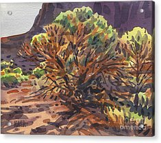 Acrylic Print featuring the painting Utah Juniper by Donald Maier