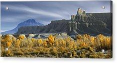 Utah Outback 44 Acrylic Print by Mike McGlothlen