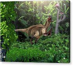 Utahraptor Dinosaur Acrylic Print
