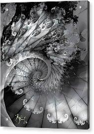 V-11 Acrylic Print
