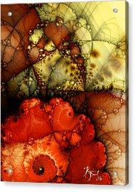 V-31 Acrylic Print by Dennis Brady