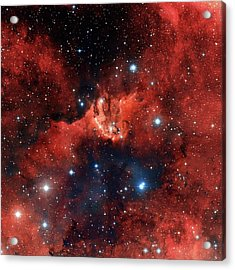 V1318 Cygni Star Cluster Acrylic Print by Robert Gendler