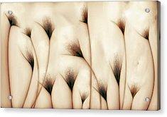 Vaginae Terram Acrylic Print by Carlos P. Vazquez