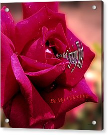 Valentine Dripping Wet Acrylic Print by Thomas Woolworth