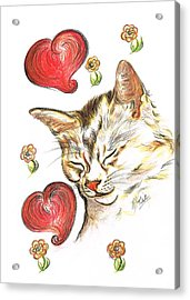Valentine Cat Acrylic Print by Teresa White