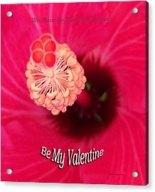 Valentine We Have So Much In Common Acrylic Print by Thomas Woolworth