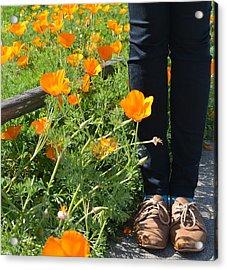 Valery's Shoes Acrylic Print by Lisa Lieberman