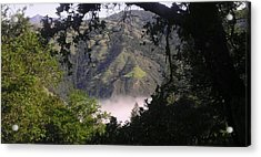 Valley Fog Acrylic Print by Justin Moranville