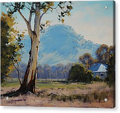Valley Gum Tree Acrylic Print by Graham Gercken
