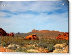 Valley Of Fire Acrylic Print by Marti Green