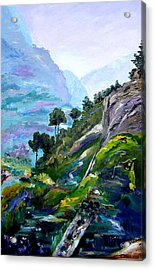 Acrylic Print featuring the painting Valley Of Saints by Ray Khalife