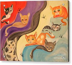Valley Of The Kittens Acrylic Print by Rachel Carmichael
