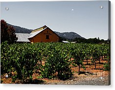 Valley Of The Moon Sonoma California 5d24485 V2 Acrylic Print by Wingsdomain Art and Photography