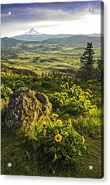 Acrylic Print featuring the photograph Valley Vista by Judi Baker
