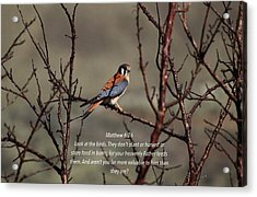 Value Acrylic Print by Lynn Hopwood