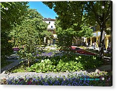 Acrylic Print featuring the photograph Van Gogh - Courtyard In Arles by Allen Sheffield