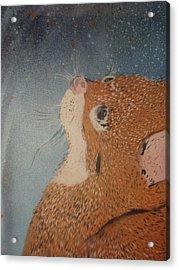 Van Goghs Cat Acrylic Print by Christopher Golding