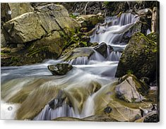 Van Trump Creek Mount Rainier National Park Acrylic Print by Bob Noble Photography