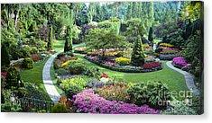 Vancouver Butchart Sunken Gardens Beautiful Flowers No People Panorama Acrylic Print by David Zanzinger