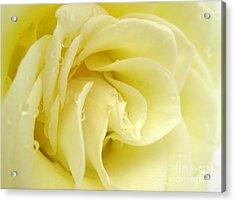 Vanilla Swirl Acrylic Print