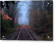 Vanishing Autumn Acrylic Print by Sarai Rachel
