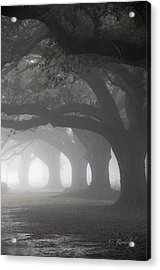 Vanishing Point Acrylic Print by Cheri Randolph