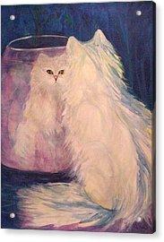 Vanity Acrylic Print by Carolyn LeGrand