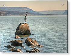 Acrylic Print featuring the photograph Vantage Point by Jeff Cook