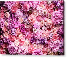 Various Cut Flowers, Detail Acrylic Print by Jonathan Knowles