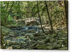 Acrylic Print featuring the photograph Vaughan Woods Bridge by Jane Luxton