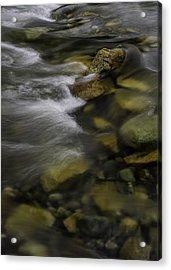 Vedder Waters Acrylic Print