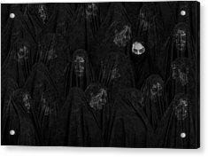 Veil Acrylic Print