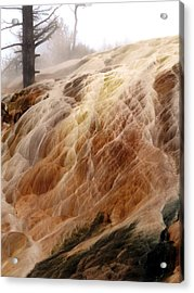 Veil Of Color Acrylic Print