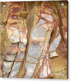 Veined Rock Acrylic Print by Barbie Corbett-Newmin