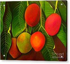Venezuelan Mangos Acrylic Print