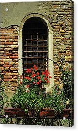 Venice Antique Window Acrylic Print