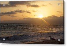 Venice Beach Sunset Acrylic Print by Rollie Robles