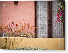 Acrylic Print featuring the photograph Venice Pink by Kevin Bergen