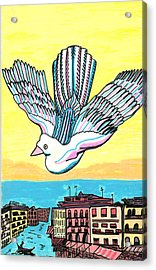 Acrylic Print featuring the drawing Venice Seagull by Don Koester