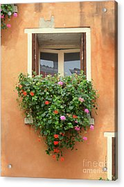 Venice Shutters Flowers Orange Wall Acrylic Print
