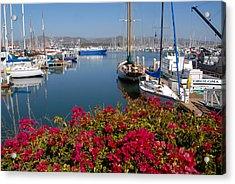 Ventura Harbor Acrylic Print