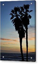 Ventura Palm Sunset Acrylic Print