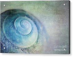 Venuto Di Mare Acrylic Print