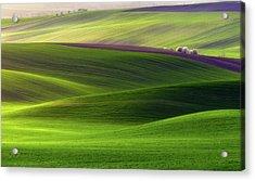 Verdant Land Acrylic Print by Piotr Krol (bax)