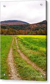 Vermont Farmer's Track Acrylic Print by Vinnie Oakes