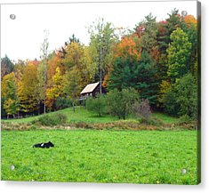 Vermont Ideal Acrylic Print